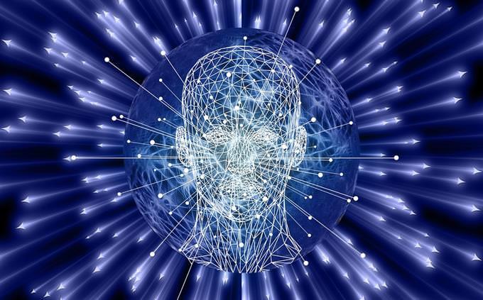 מבחן על גברים ונשים: איור של ראש