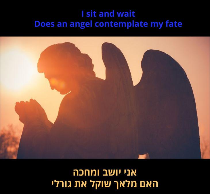 """מצגת לשיר """"מלאכים"""" של רובי ויליאמס: """"אני יושב ומחכה/ האם מלאך שוקל את גורלי"""""""