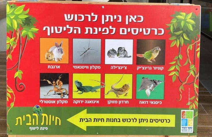 שלטים מצחיקים: של שמציג חיות מוזרות בפינת ליטוף