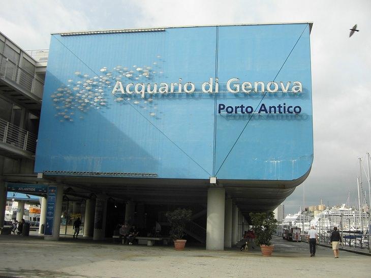 אטרקציות גנואה: הכניסה לאקווריום של גנואה