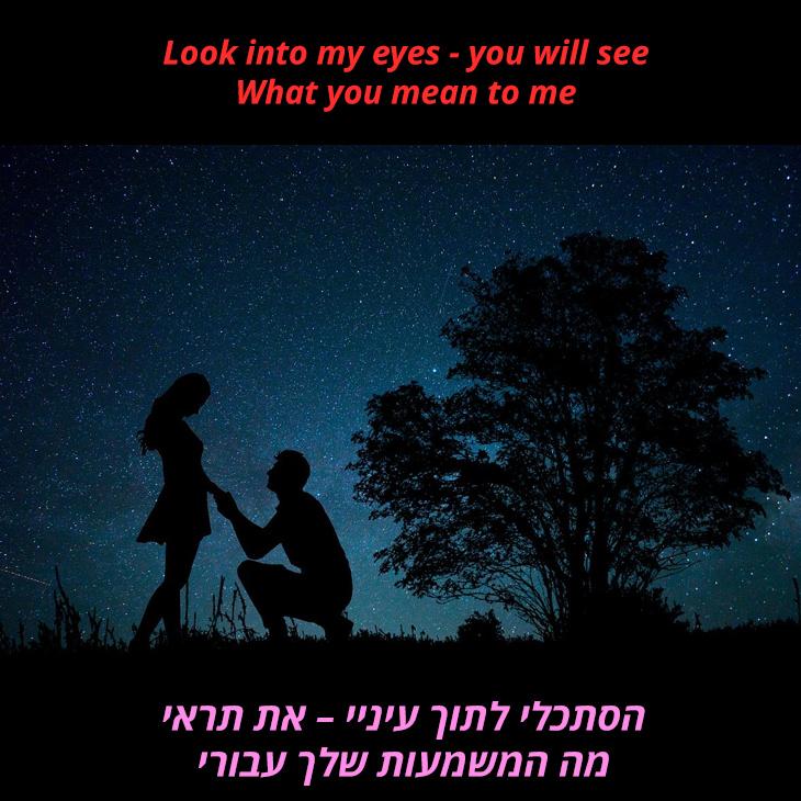 תרגום לשיר (Everything I Do) I Do It For You: הסתכלי לתוך עיניי – את תראי מה המשמעות שלך עבורי