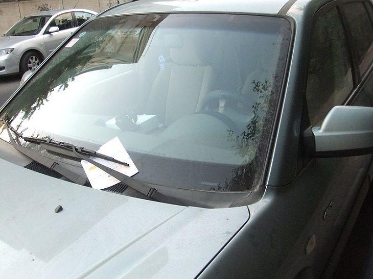 קנסות עירוניים, הסברים וסיבות לביטול: קנס על מכונית