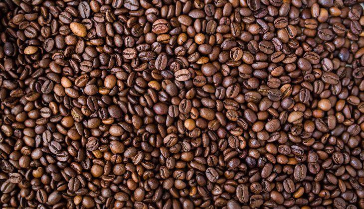 ההיסטוריה של הקפה: פולי קפה