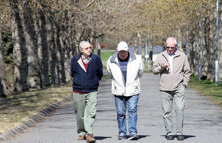 קשרים חברתיים והשפעתם: שלושה אנשים מבוגרים הולכים יחד