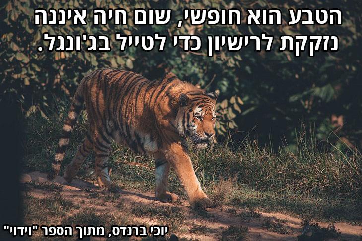 """ציטוטים על טבע: """"הטבע הוא חופשי, שום חיה איננה נזקקת לרישיון כדי לטייל בג'ונגל. (יוכי ברנדס, מתוך הספר """"וידוי"""")"""