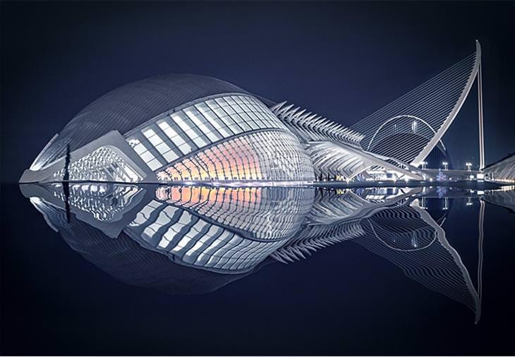 תמונות מתחרות אמנות הבנייה: מבנה בצורת דג