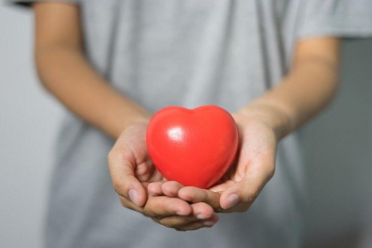 יתרונות של שמרי אורז אדום: ידיים אוחזות בלב
