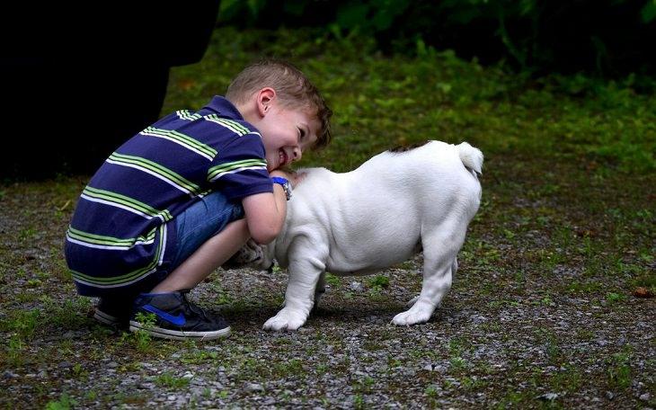 שקרים נפוצים של ילדים: ילד קטן וכלב