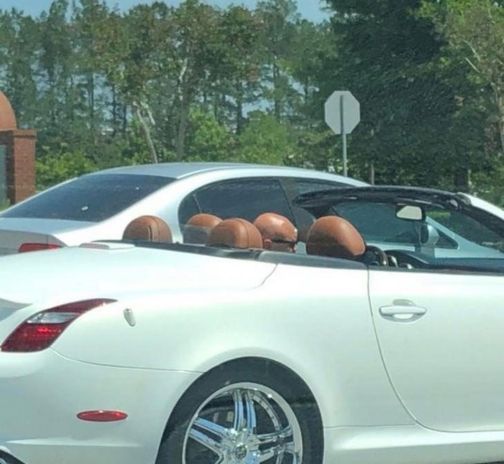 אשליות אופטיות מצחיקות: אדם קירח ברכב עם גג נפתח