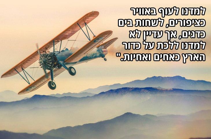 """ציטוטי מרטין לותר קינג: למדנו לעוף באוויר כציפורים, לשחות בים כדגים, אך עדיין לא למדנו ללכת על כדור הארץ כאחים ואחיות."""""""