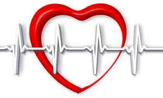 אוסף כתבות על בריאות הלב: איור של לב על רקע מדידת EKG