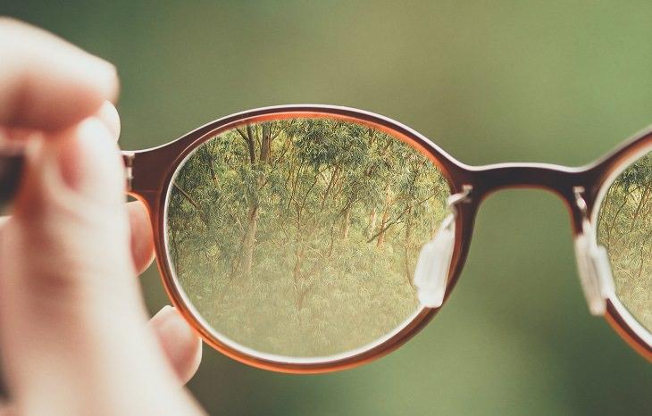 מי יכול להיות פסיכולוג: יער דרך משקפיים