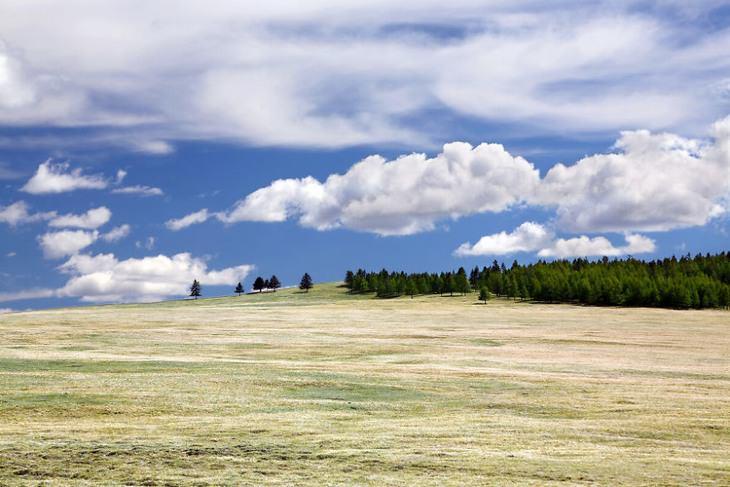 תמונות שלוות: שטח פתוח במונגוליה