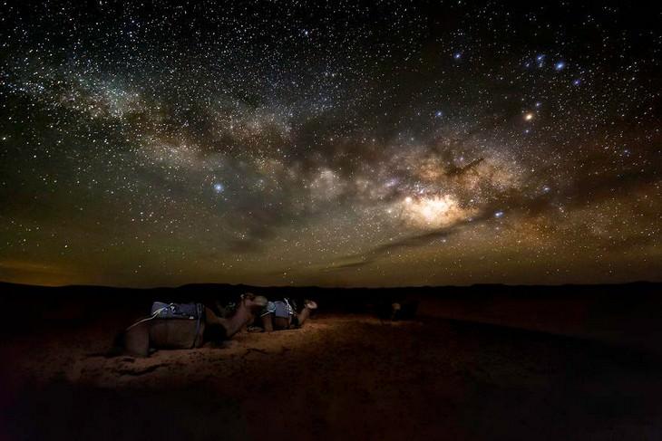 תמונות מדהימות של מרוקו: גמלים מתחת לשמיים זרועי כוכבים