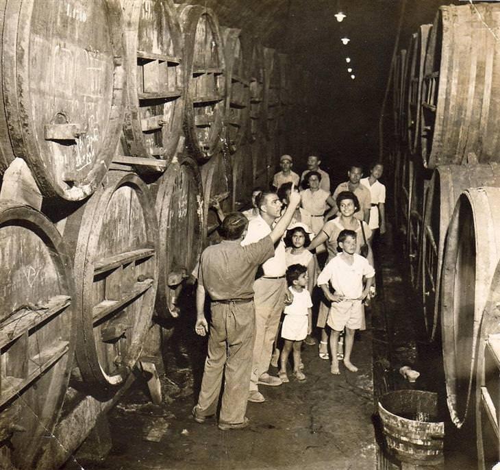 תמונות יפות: סיור מודרך ביקבי כרמל בזכרון יעקב בשנת 1945.