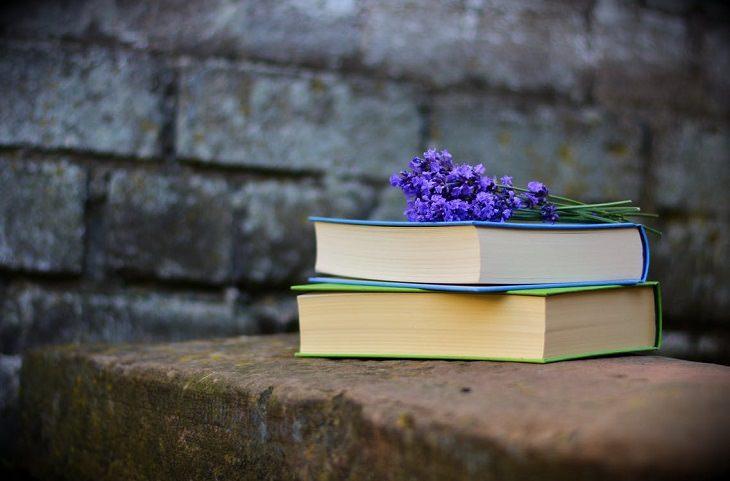 מקרי היעלמות לא מפוענחים: שני ספרים אחד על השני, ומעליהם פרחים סגולים