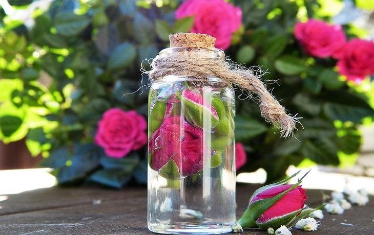 יתרונות בריאותיים של מי ורדים: בקבוק עם ורדים