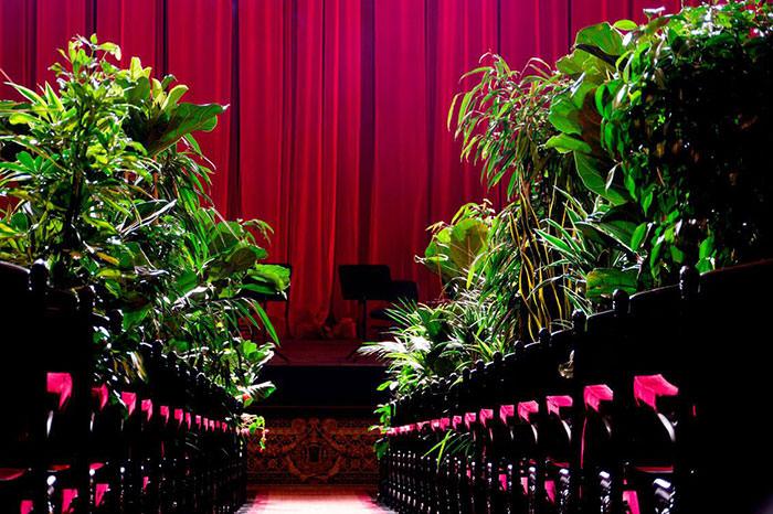 הופעה מול עציצים בבית האופרה בברצלונה: עציצים באולם