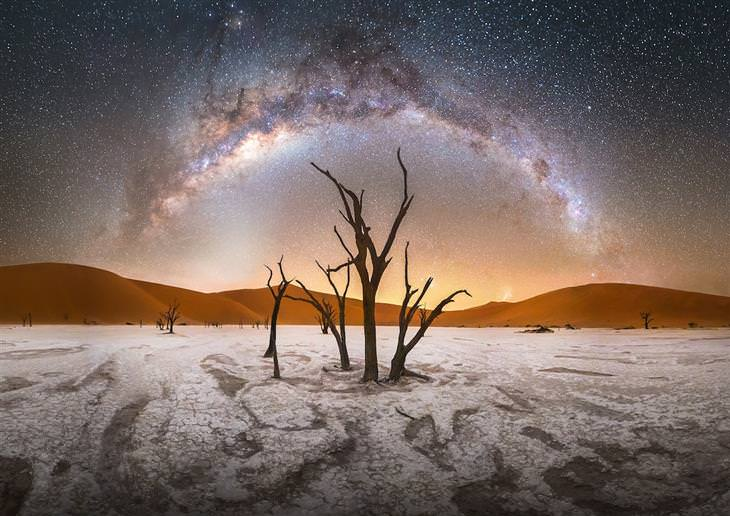 תמונות מתחרות צלם שביל החלב: עץ בודד על רקע שביל החלב הפארק הלאומי נמיב-נאוקלופט בנמיביה