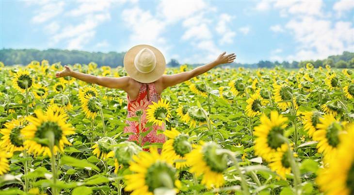 סוגי אושר: אישה מרימה ידיים בשדה חמניות
