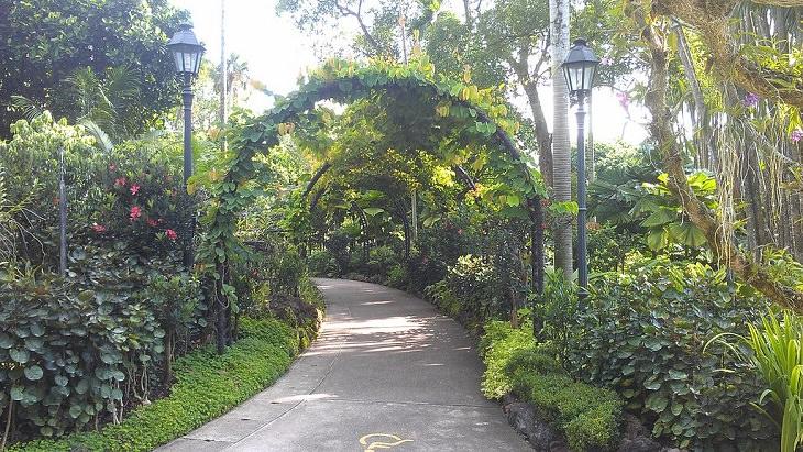 הגנים הבוטניים של סינגפור: הכניסה