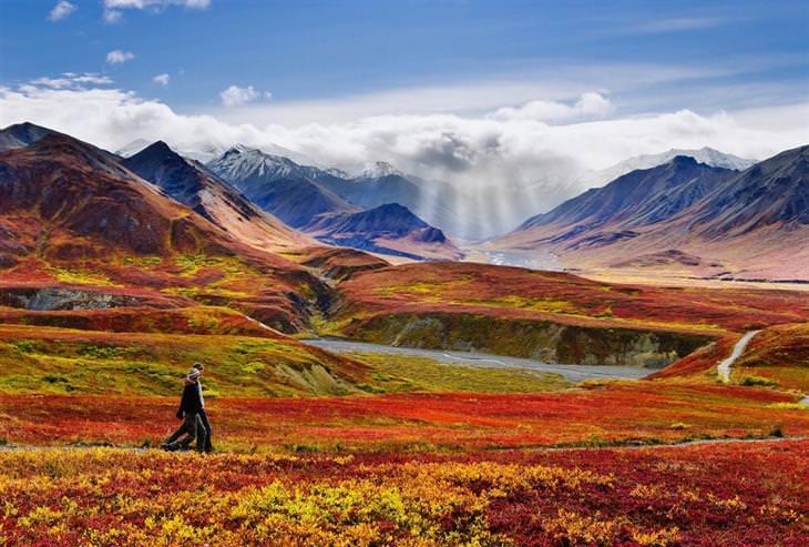 תמונות של אלסקה: הפארק והשמורה הלאומיים דנאלי בסתיו