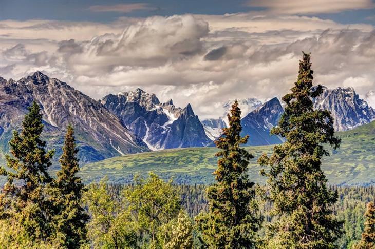 תמונות של אלסקה: הפארק והשמורה הלאומיים דנאלי בקיץ