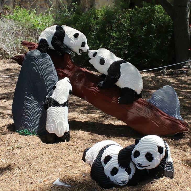 פסלי חיות בלגו: דובי פנדה