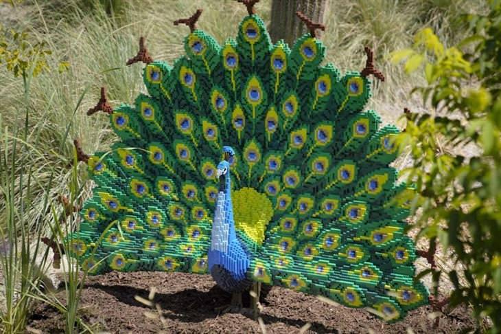 פסלי חיות בלגו: טווס