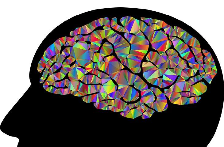 עצות לחיים רגועים ומאושרים: איור של מוח צבעוני
