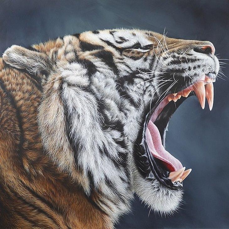 ציורי חיות בר של קרלה גרייס: ציור של טיגריס