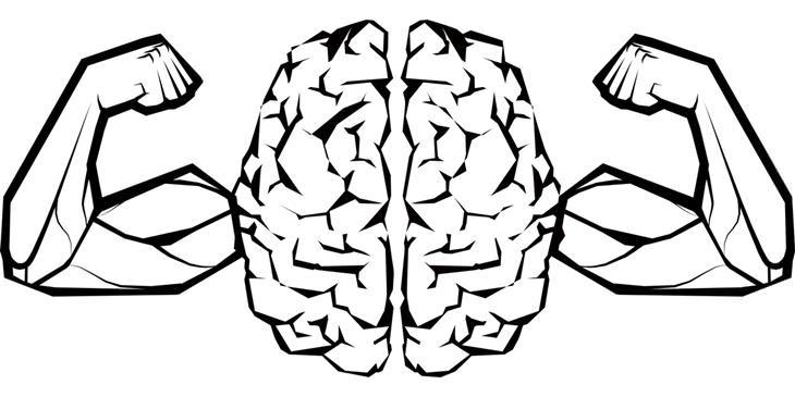 אפקטיבייט לשיפור הזיכרון: איור של מוח עם ידיים שריריות