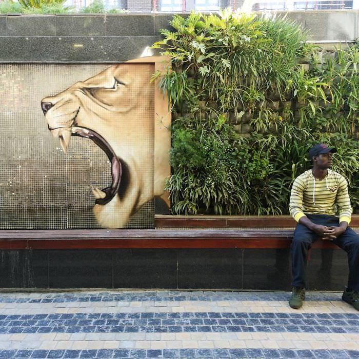 יצירות גרפיטי מדרום אפריקה: אריה עם רעמת שיח