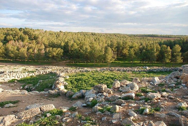 שיאני טבע, טיולים והיסטוריה בישראל:  יער יתיר