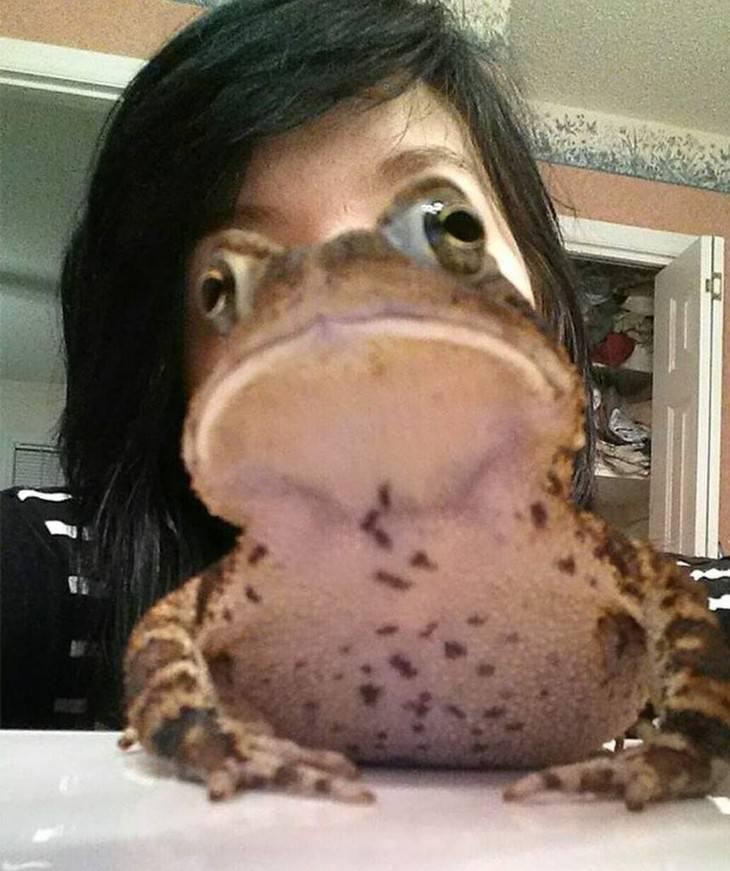 תמונות ברגע הנכון: אשלייה אופטית של אישה עם פרצוף צפרדע