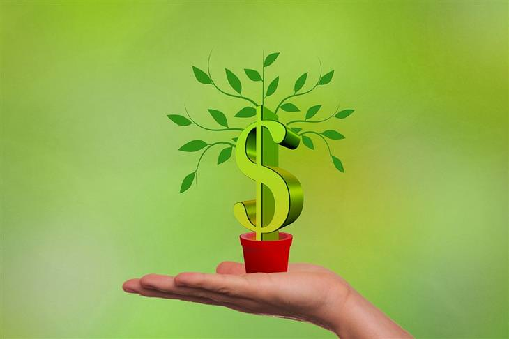 האנשים העשירים בעולם: צמח ועליו סמל דולר