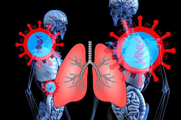 נזקים של קורונה: איור של ריאות, שלדים ווירוס קורונה