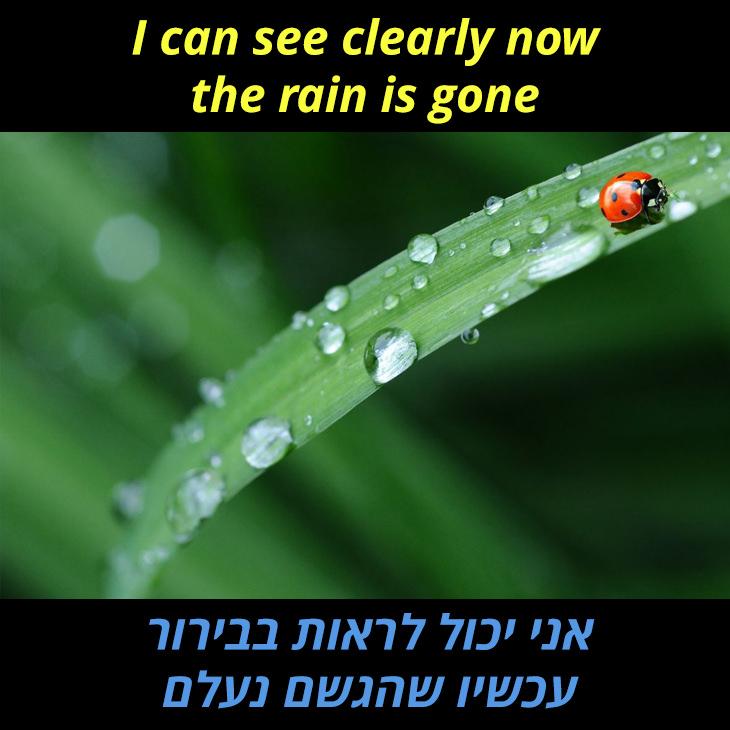 תרגום לשיר I Can See Clearly Now: אני יכול לראות בבירור עכשיו שהגשם נעלם