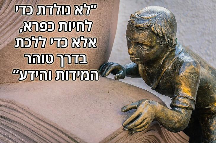 """ציטוטי דנטה אליגיירי: """"לא נולדת כדי לחיות כפרא אלא כדי ללכת בדרך טוהר המידות והידע"""""""