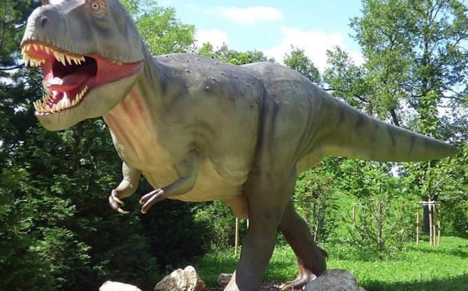 מבחן ידע כללי: דינוזאור