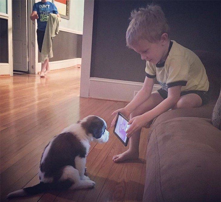 תמונות חמודות של ילדים וכלבים: ילד מראה לגור טאבלט