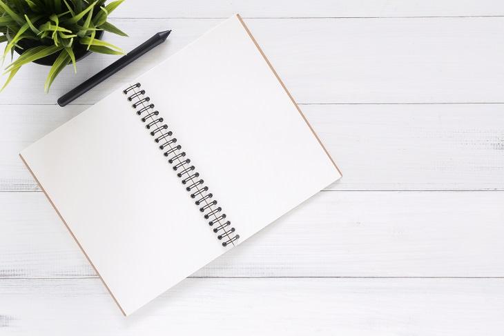 שאלות שצריך לשאול כששופטים אחרים: מחברת פתוחה על שולחן, ולצדה עט ועציץ