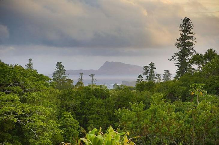 סיפור של האי נורפוק: מראה מעונן טיפוסי באי