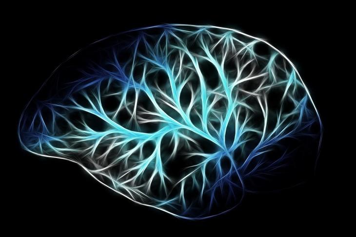 אירובי ותרומתו לבריאות המוח: הדמיה גרפית של מוח