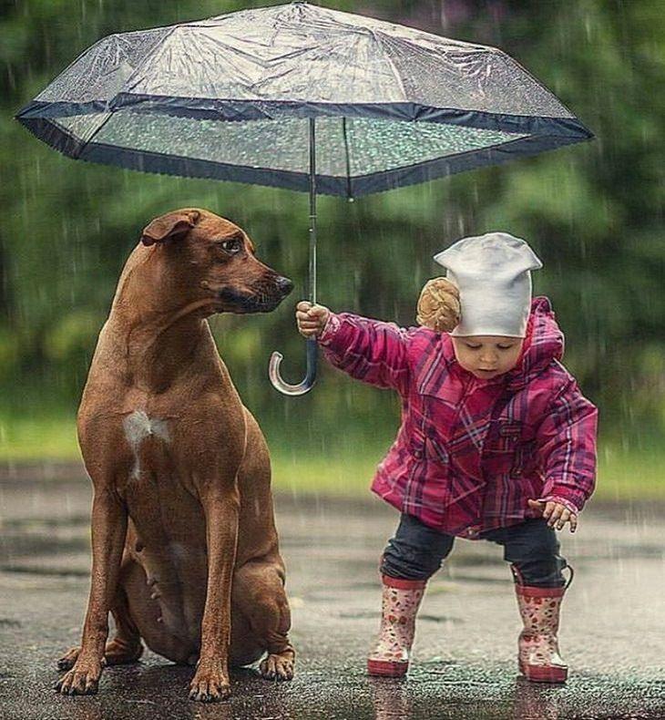 תמונות מחממות לב של ילדים מקסימים: ילדה מגנה על כלב מהגשם עם מטרייה