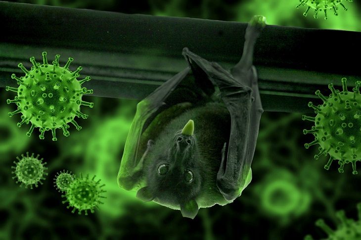 מחקר על הקשר בין מגפת הקורונה להתחממות הגלובלית: עטלף עומד הפוך על גזע ומוציא לשון, ומסביבו נגיפי קורונה