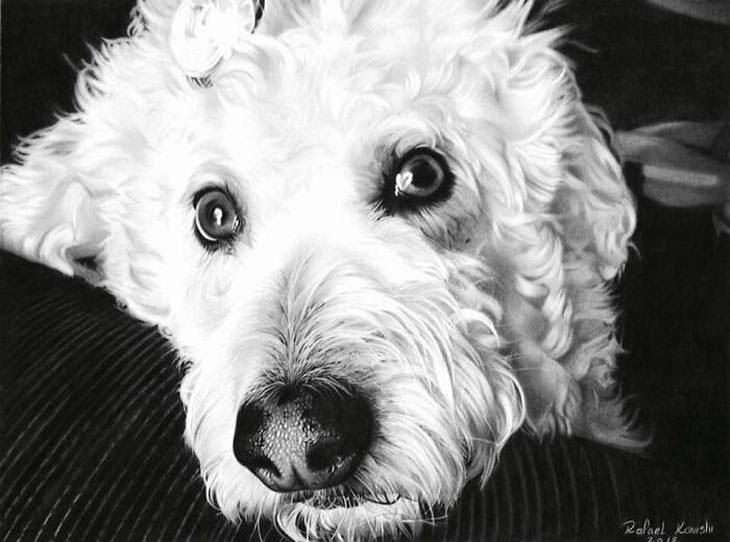 ציורים מציאותיים ביותר: כלב