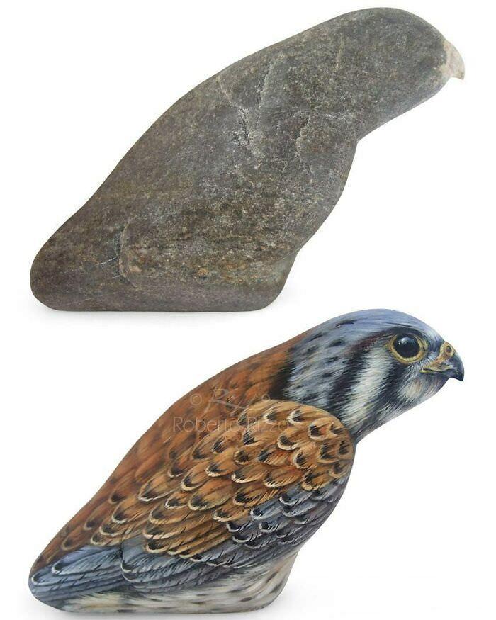 אבנים עם ציורי חיות: בז