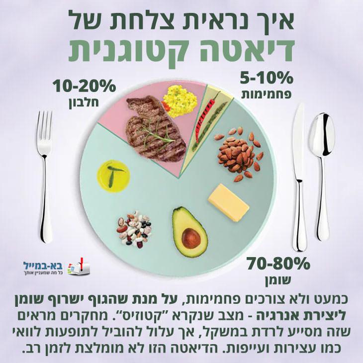 צלחות של דיאטות שונות: צלחת לדיאטה קטוגנית