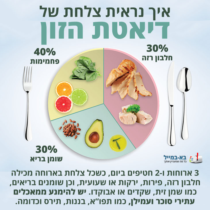 צלחות של דיאטות שונות: צלחת לדיאטת הזון